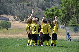 Toddler's soccer team standing on grass