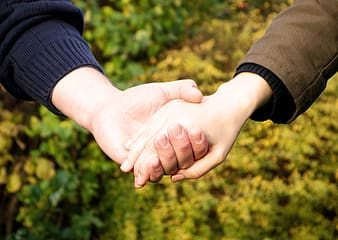 Selective focus photography of two person's holding hands wearing brown and black long sleeve tops with yellow petaled flowers as a background