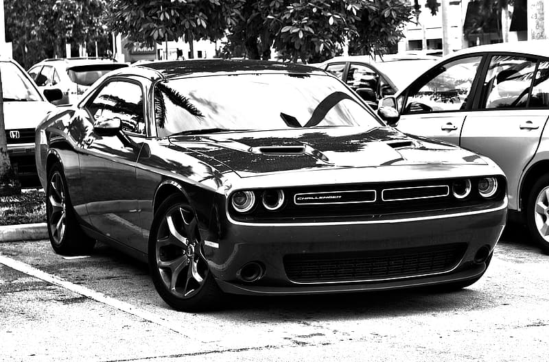 Grayscale photo of Dodge Challenger coupe