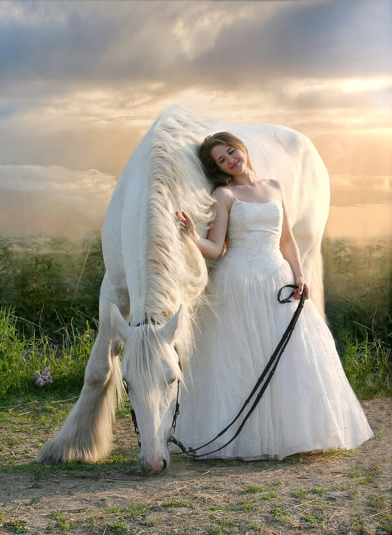 Bride leaning on white horse