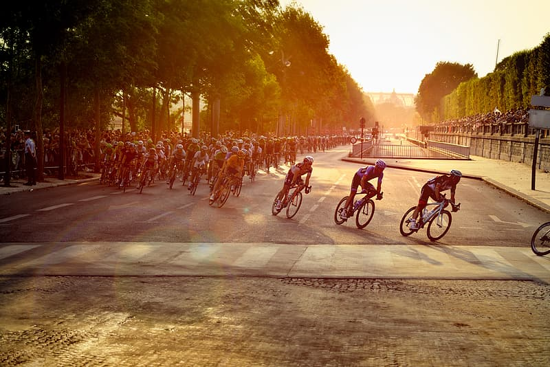 Men cycling on road during daytime