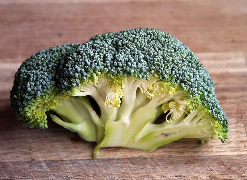Green broccoli in shallow focus photography