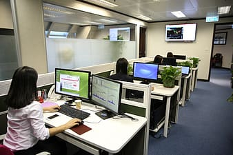 Group of people sitting in front of desk working on their cubicles