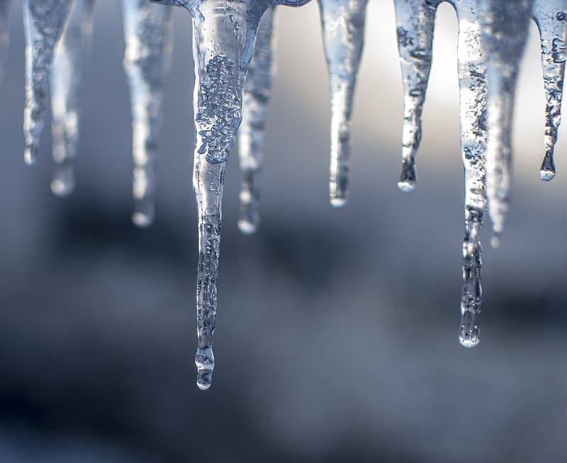 Shallow focus photography of ice