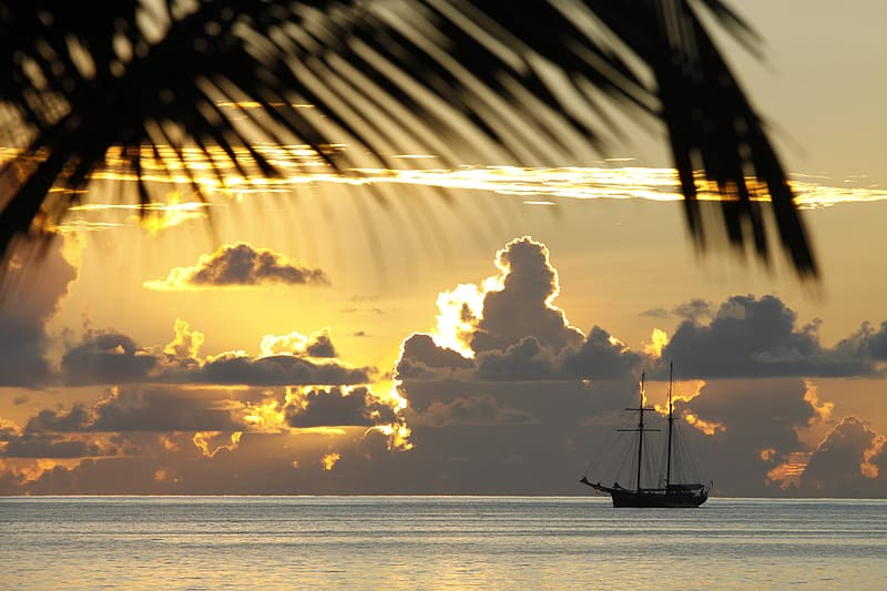 Silhouette of coconut tree and sailing boat in the ocean during sunset