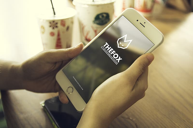 Person holding silver iPhone 6 Plus displaying The Fox