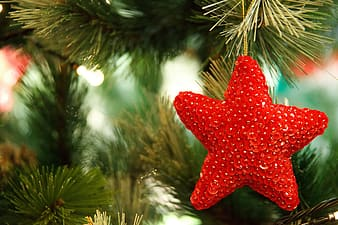 Star shape red ornament