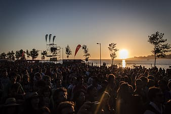 Silhouette of people gathering during golden hour