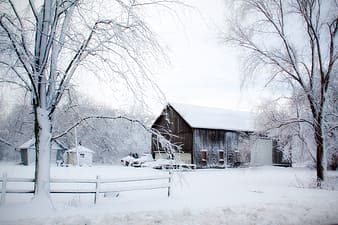Photo of brown wooden house covered with snow during day time