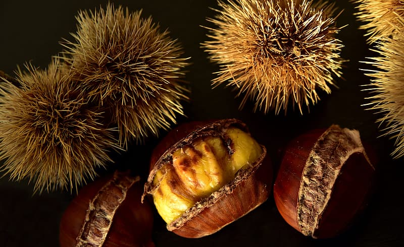 Brown and beige fruit on brown wooden table