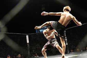 Two men fighting inside octagon cage