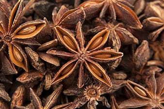 Brown star anise