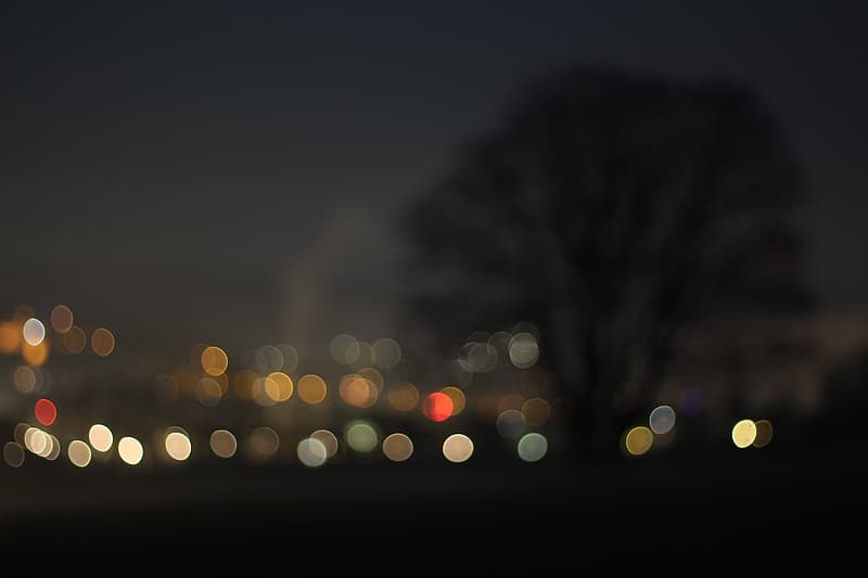 untitled, bokeh, tree, night, city, out of focus, dark, aesthetic, nature, peaceful
