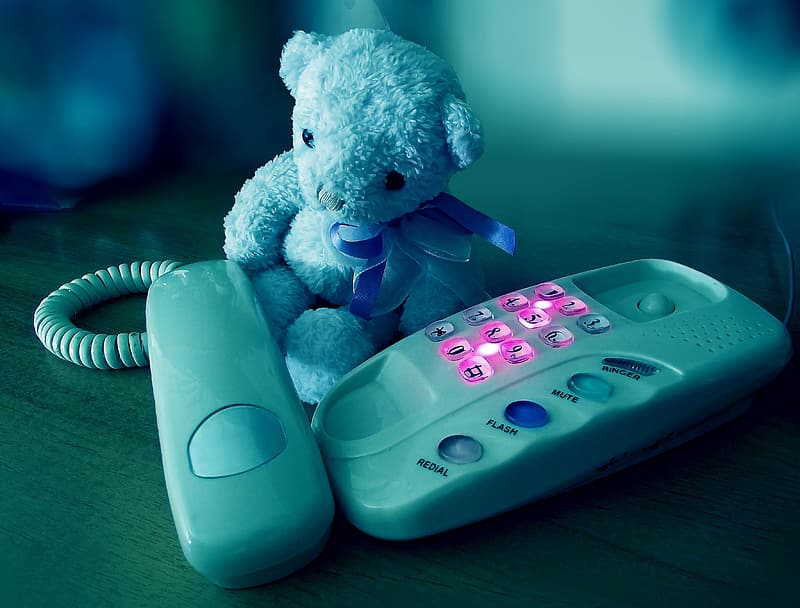 Gray teddy bear and white home telephone on brown surface