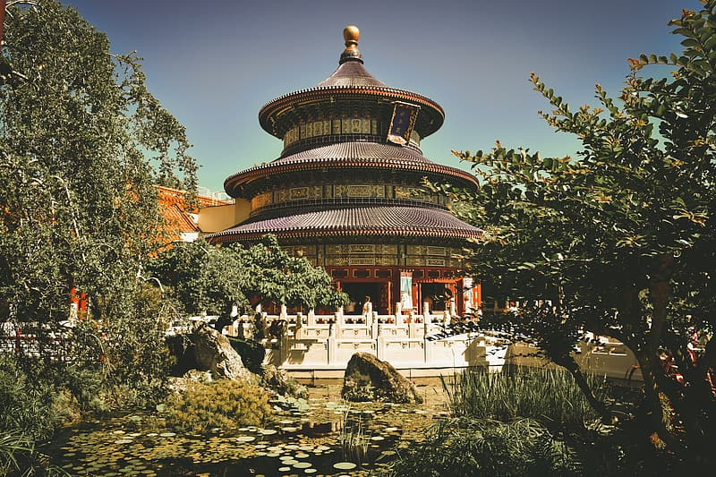 Brown and black temple with green trees under clear blue sky