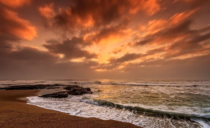 Landscape photography of seashore during golden hour