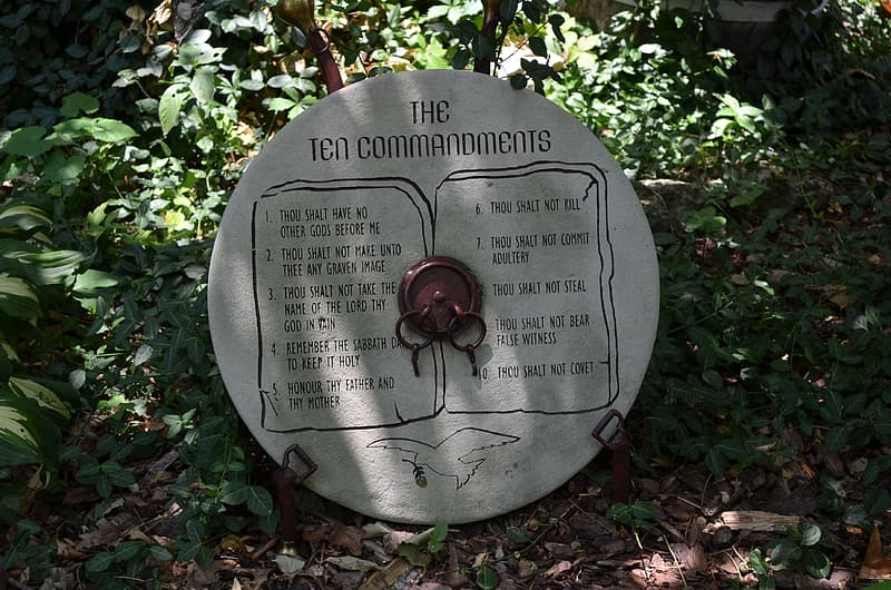 Round The Ten commandments tablet near green plants during daytime
