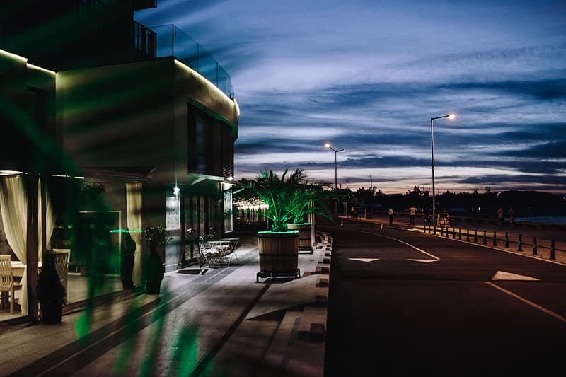 Green trees near white building during night time