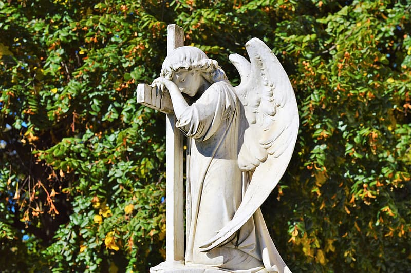 Angel statue near green plants during daytime