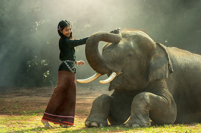 Woman in blue and red long-sleeved dress holding gray elephant