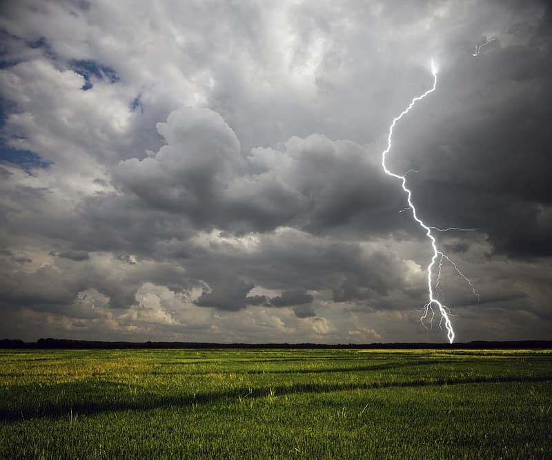 Lightning on green field under cloudy sky during daytime
