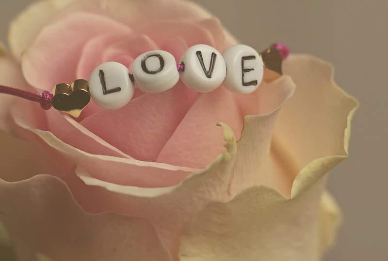 Closeup photo of beaded white Love necklace on pink-and-white rose