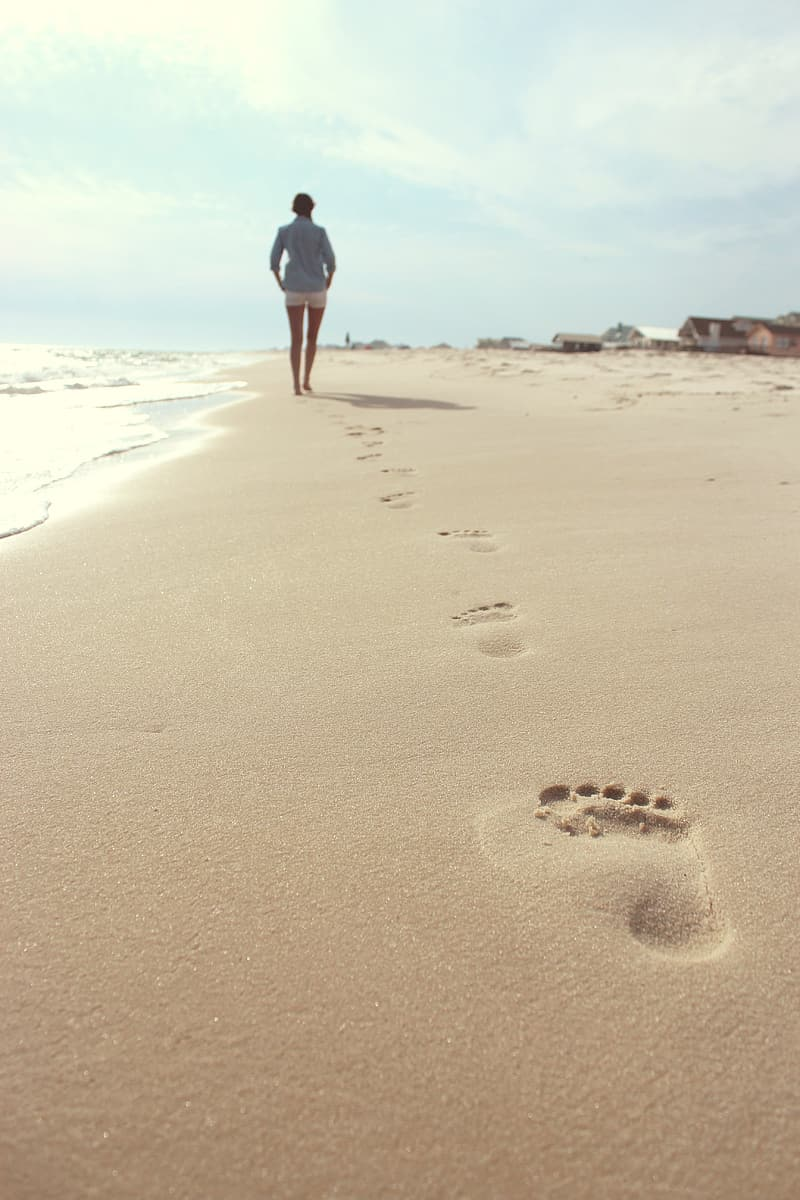 Person walking on brown beach shore during daytime