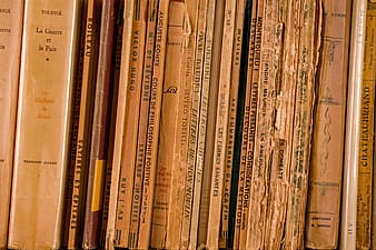 Brown and red books on brown wooden shelf