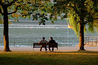 Two people sitting on brown bench