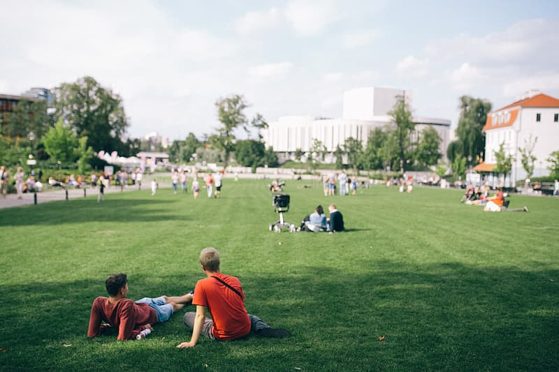 People sitting on green grass field during daytime