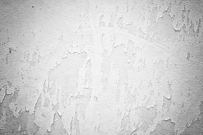 White and gray painted wall