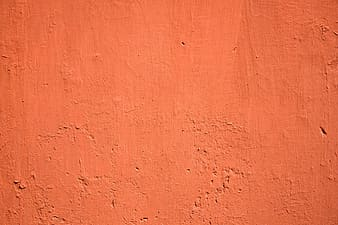 Orange wall paint