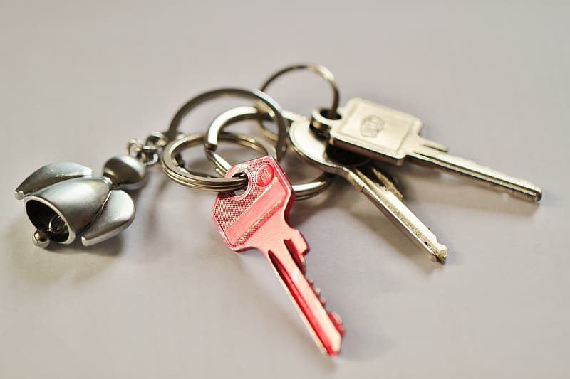 Three pink and gray keys with keychain