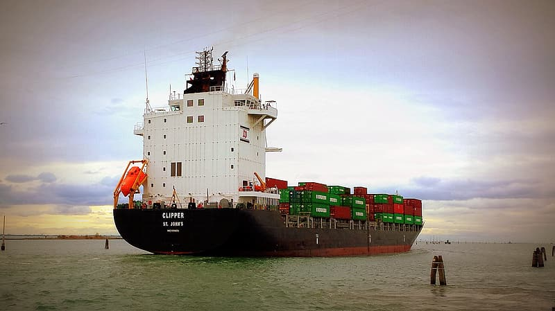 White and black cargo ship on sea during daytime