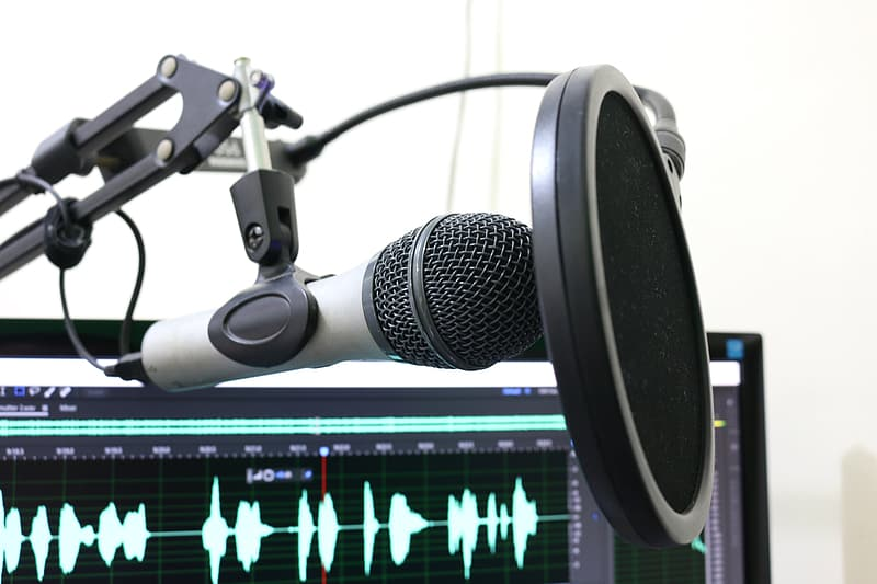 Black pop filter and gray standard microphone
