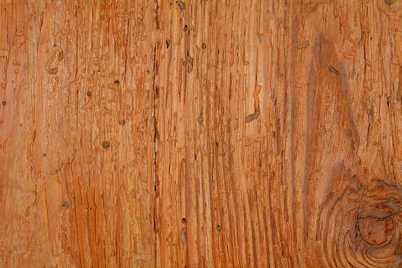 Closeup photo of brown wooden board