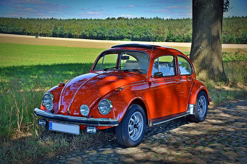 Red Volkswagen Beetle coupe parked near brown tree trunk at daytime