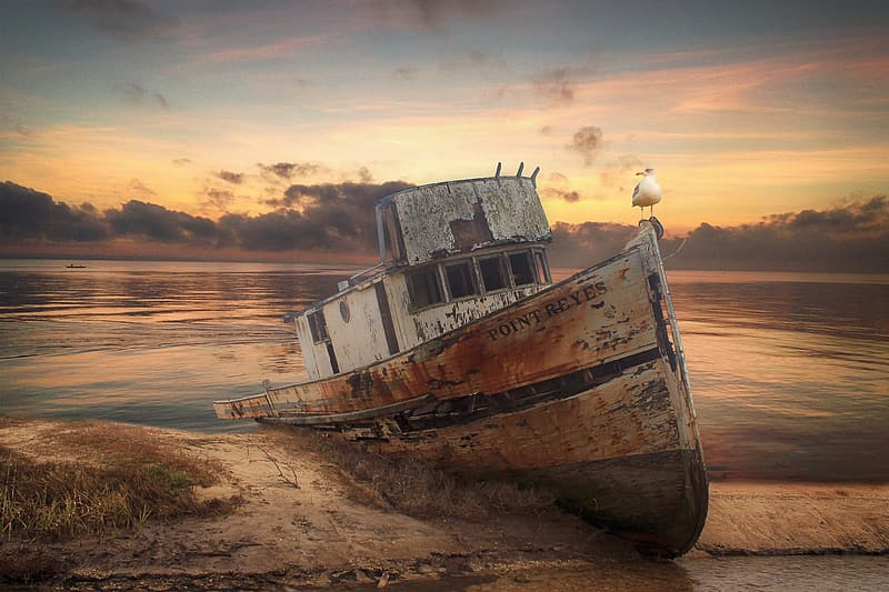 White and brown boat on brown sand during sunset
