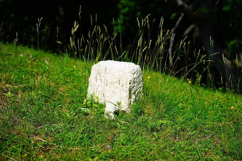 White rock on green grass during daytime