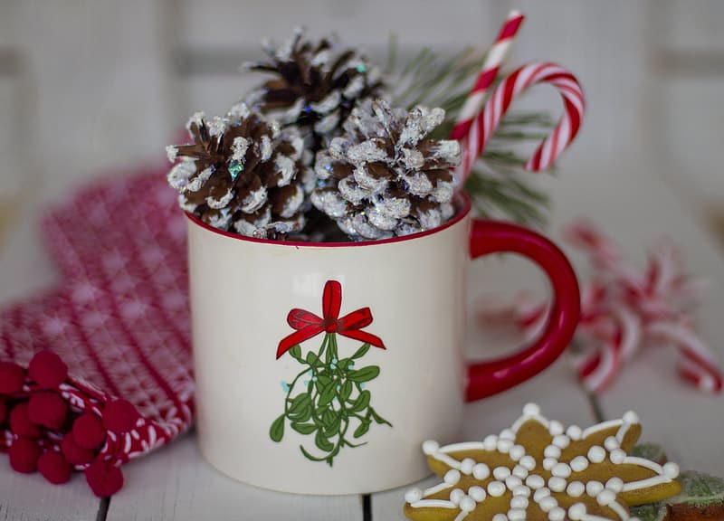 White and red ceramic mug with pinetree fruits