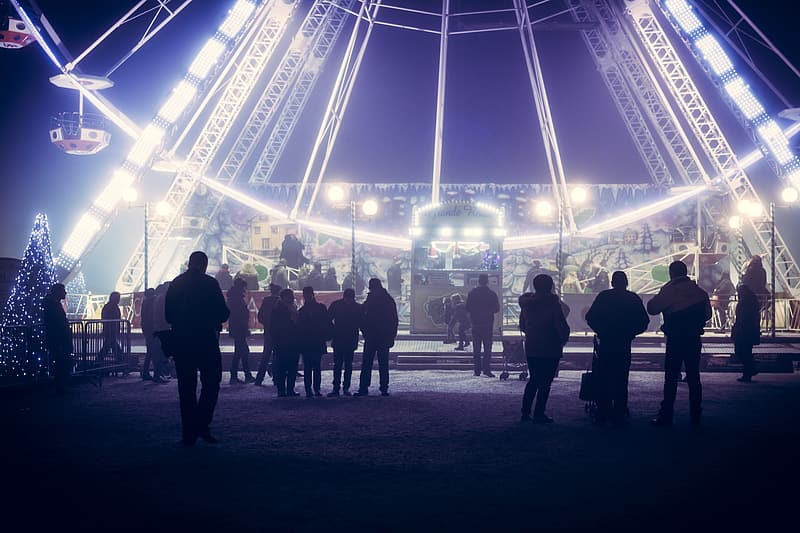 People standing near ferris wheel theme park ride during nighttime