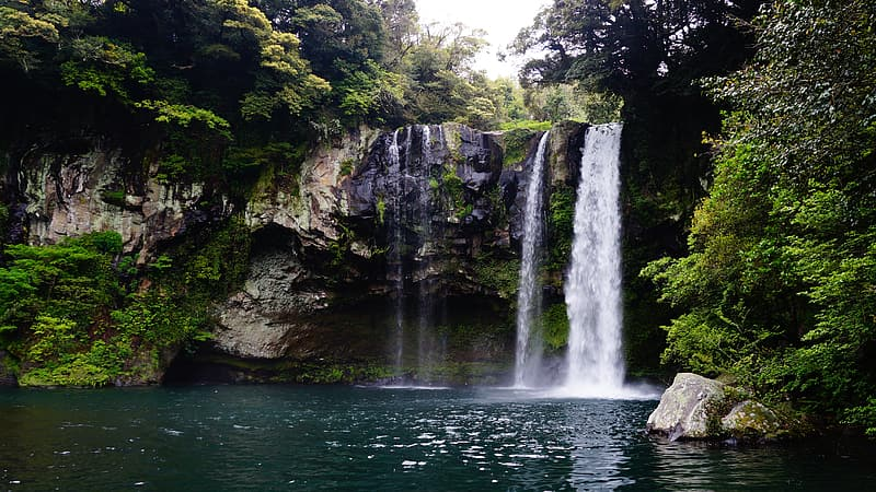 Waterfalls surrounded by green leafed trees