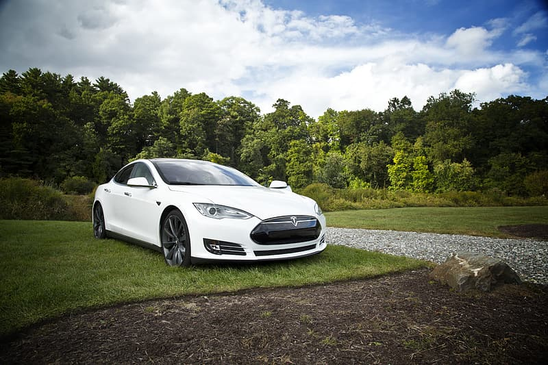 car, electric, tesla, electric car, white, electrical, vehicle, transportation, auto, energy