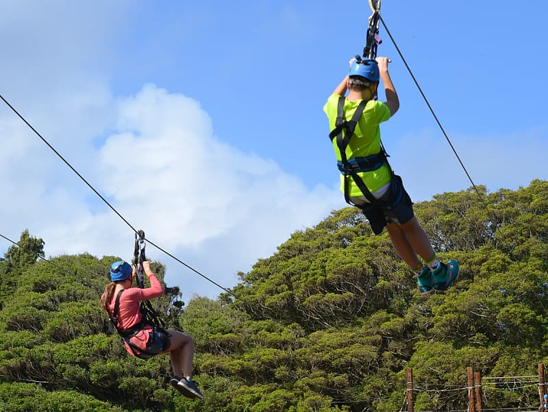 Two person zip lining during daytime