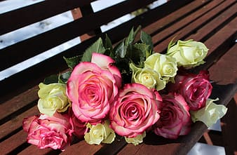 Pink and yellow petaled flowers on brown wooden bench