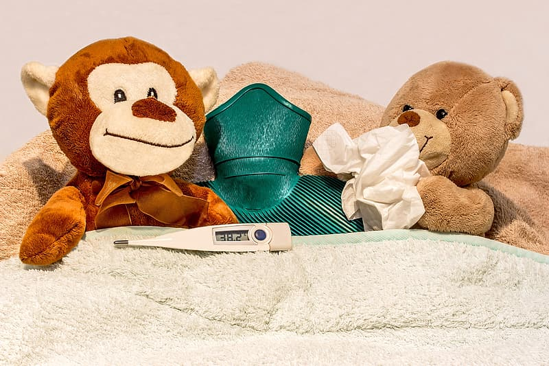 Photo of monkey and bear plush toy on bed