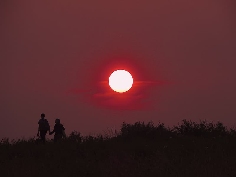 Silhouette photography of two person walking on grass field during full moon