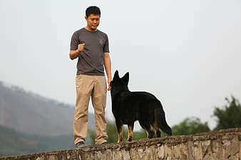 Man in gray crew neck t-shirt and brown pants standing beside black short coated dog