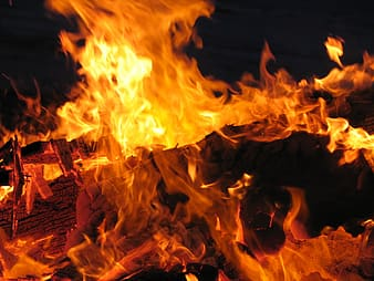 Close-up photography of bonfire