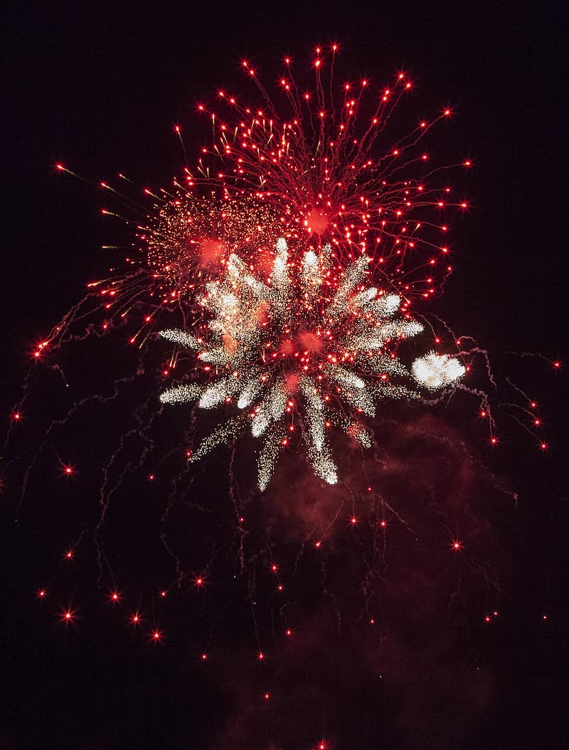 Multicolored fireworks at night time
